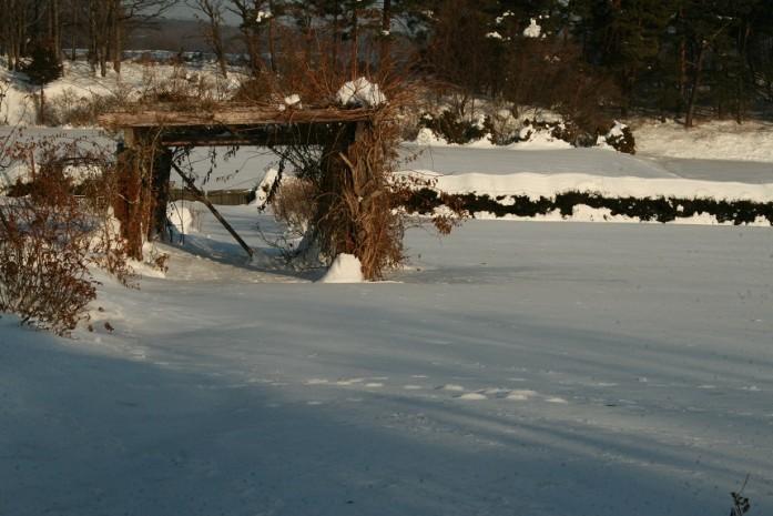 2014大雪3
