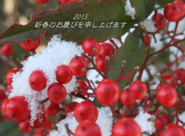 2015新春
